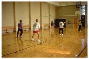Michener volleyball court