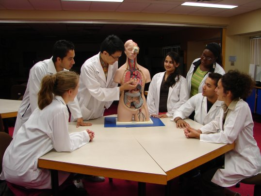 Anatomy & Physiology Resource Centre