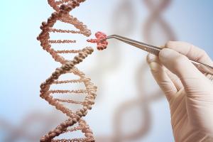 DNA - CRIPSR