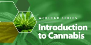 Introduction to Cannabis course banner